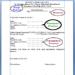 Contoh Format Surat Kuasa